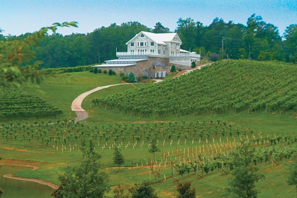 Dahlonega Wineries