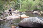 Appalachian Fly-Fishing