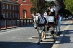 Appalachian horse-drawn carriage rides